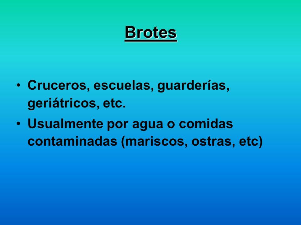 Brotes Cruceros, escuelas, guarderías, geriátricos, etc.