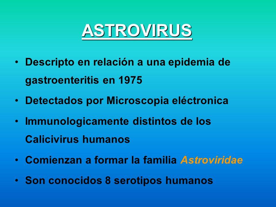 ASTROVIRUS Descripto en relación a una epidemia de gastroenteritis en 1975. Detectados por Microscopia eléctronica.
