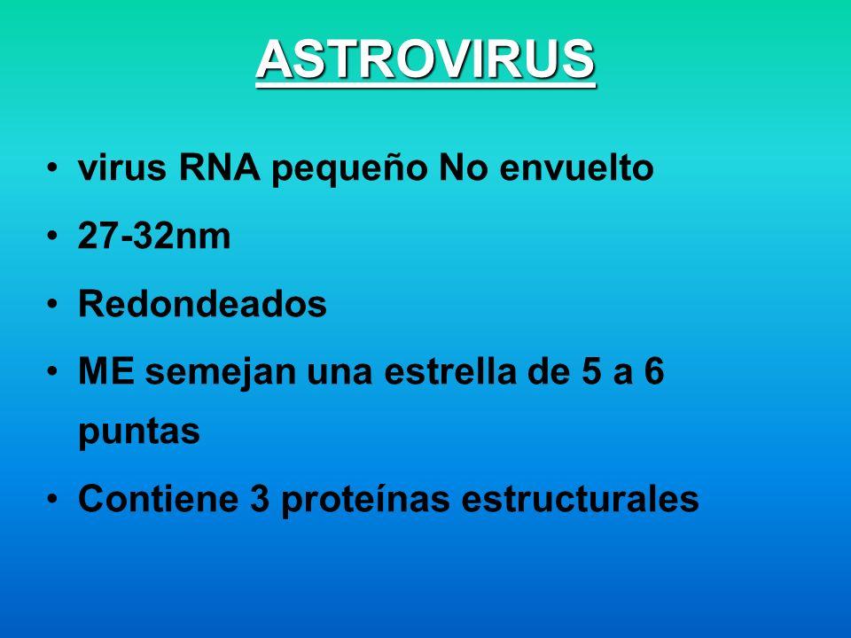 ASTROVIRUS virus RNA pequeño No envuelto 27-32nm Redondeados