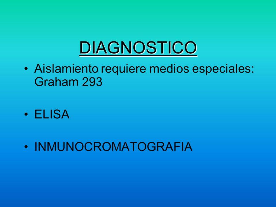 DIAGNOSTICO Aislamiento requiere medios especiales: Graham 293 ELISA