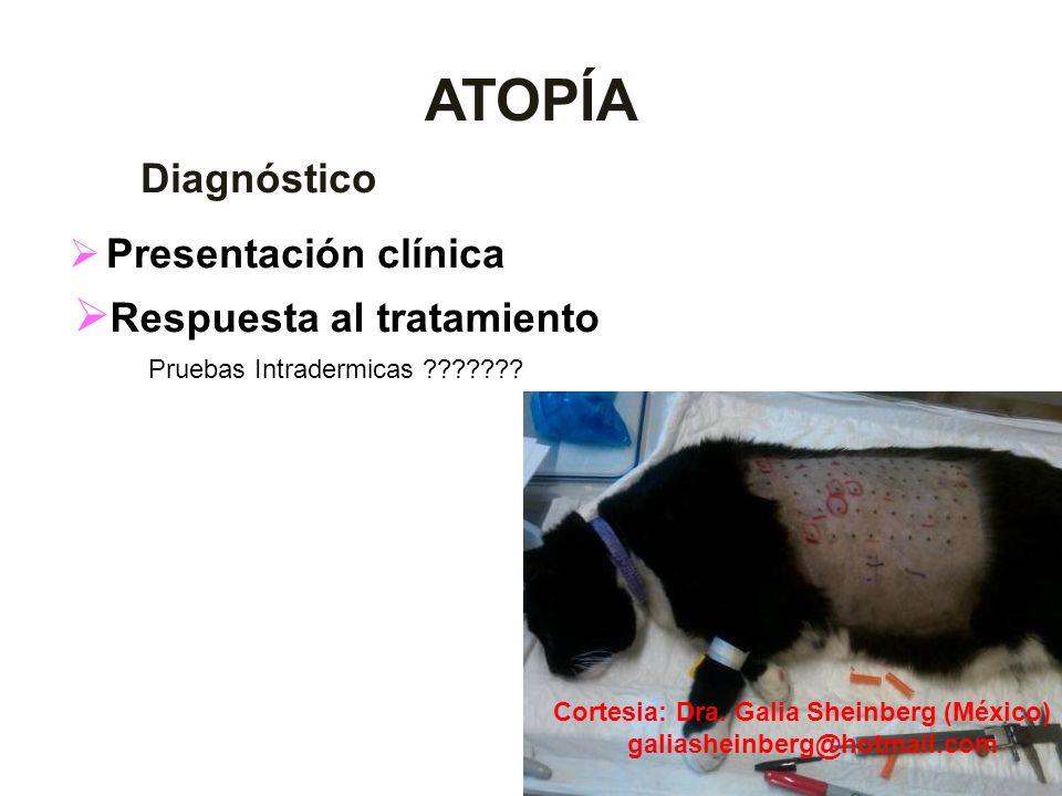 ATOPÍA Respuesta al tratamiento Diagnóstico Presentación clínica