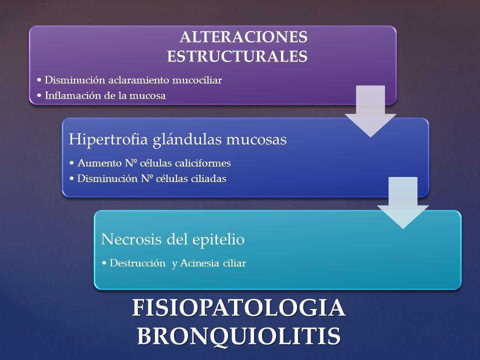 FISIOPATOLOGIA BRONQUIOLITIS