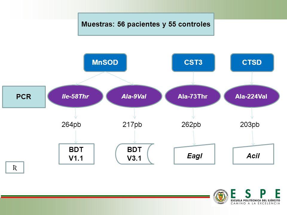 Muestras: 56 pacientes y 55 controles