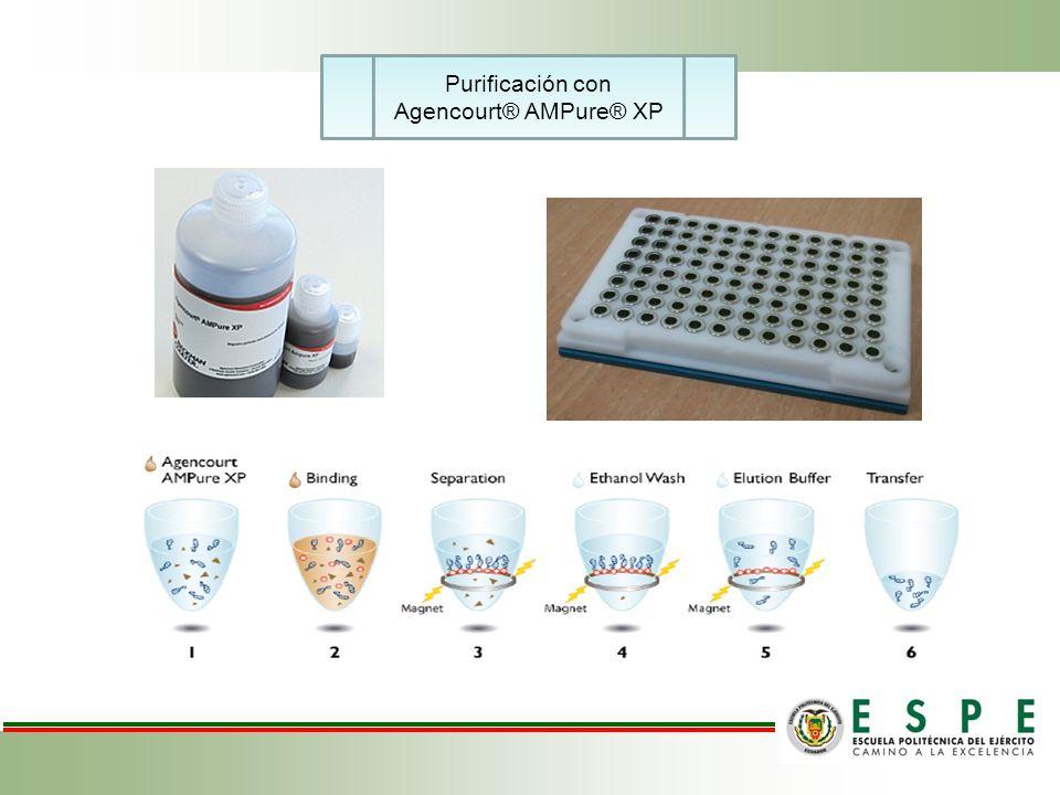 Purificación con Agencourt® AMPure® XP