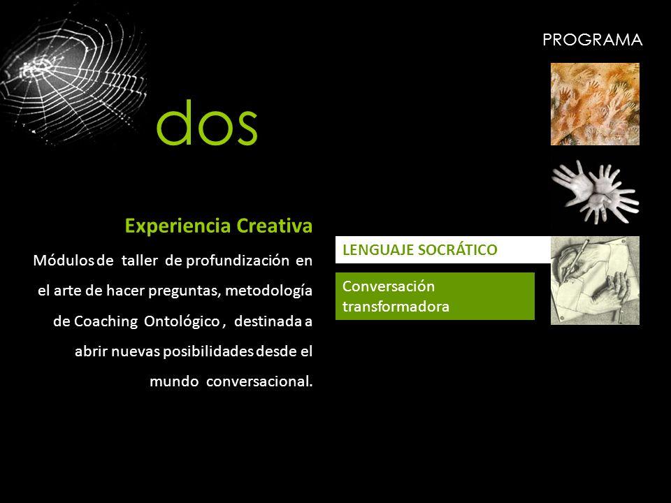 dos Experiencia Creativa PROGRAMA