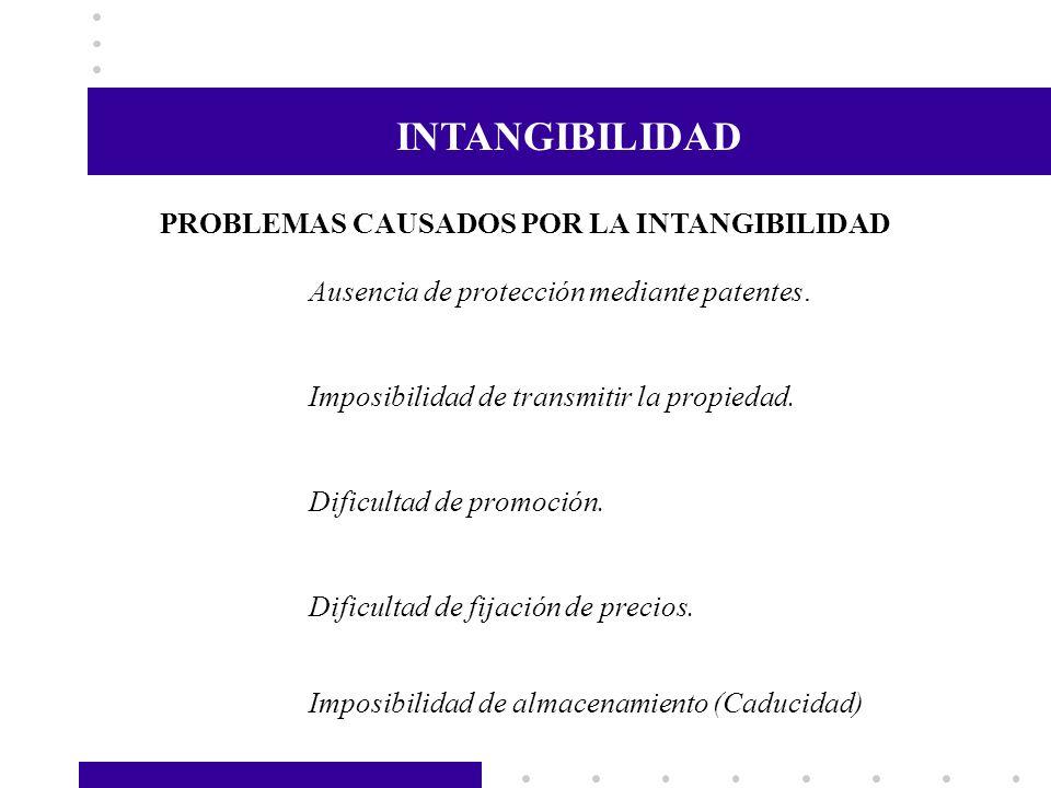 INTANGIBILIDAD PROBLEMAS CAUSADOS POR LA INTANGIBILIDAD