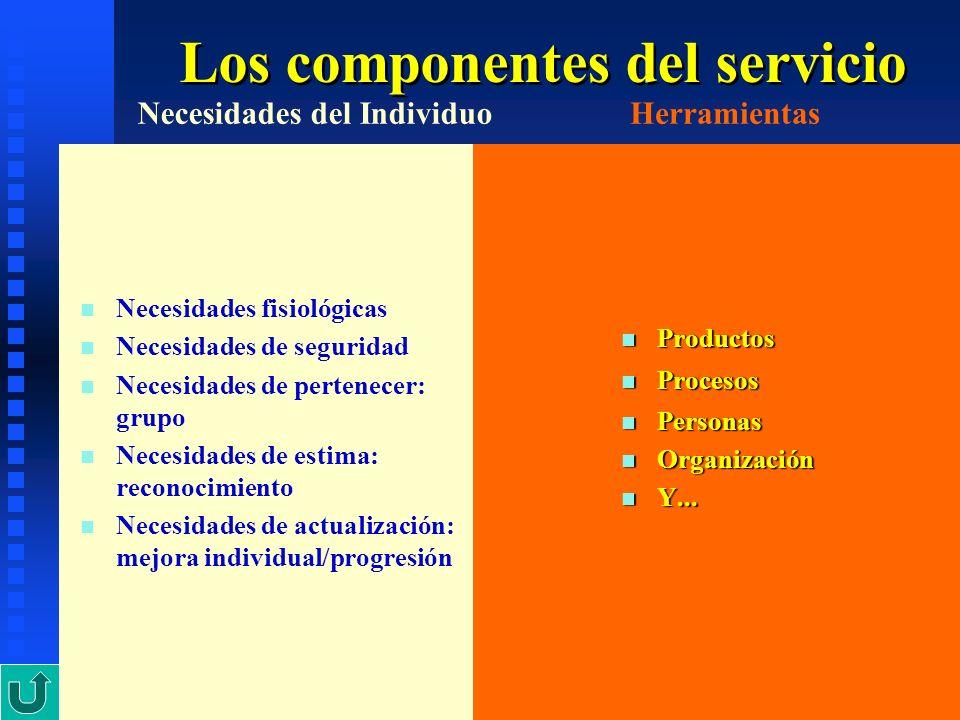 Los componentes del servicio