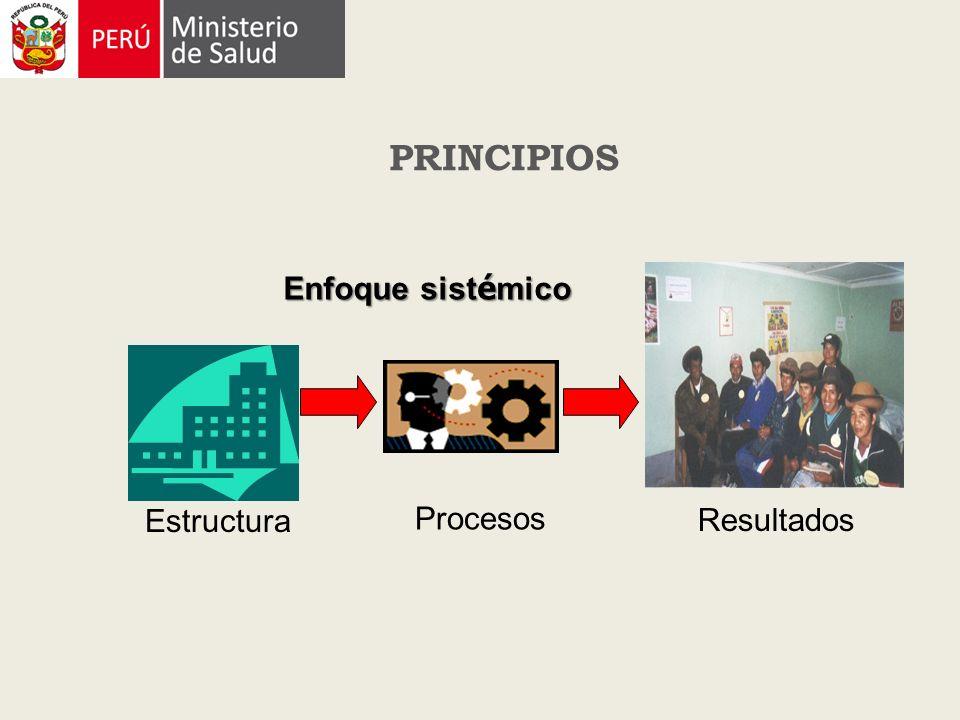 PRINCIPIOS Enfoque sistémico Estructura Procesos Resultados