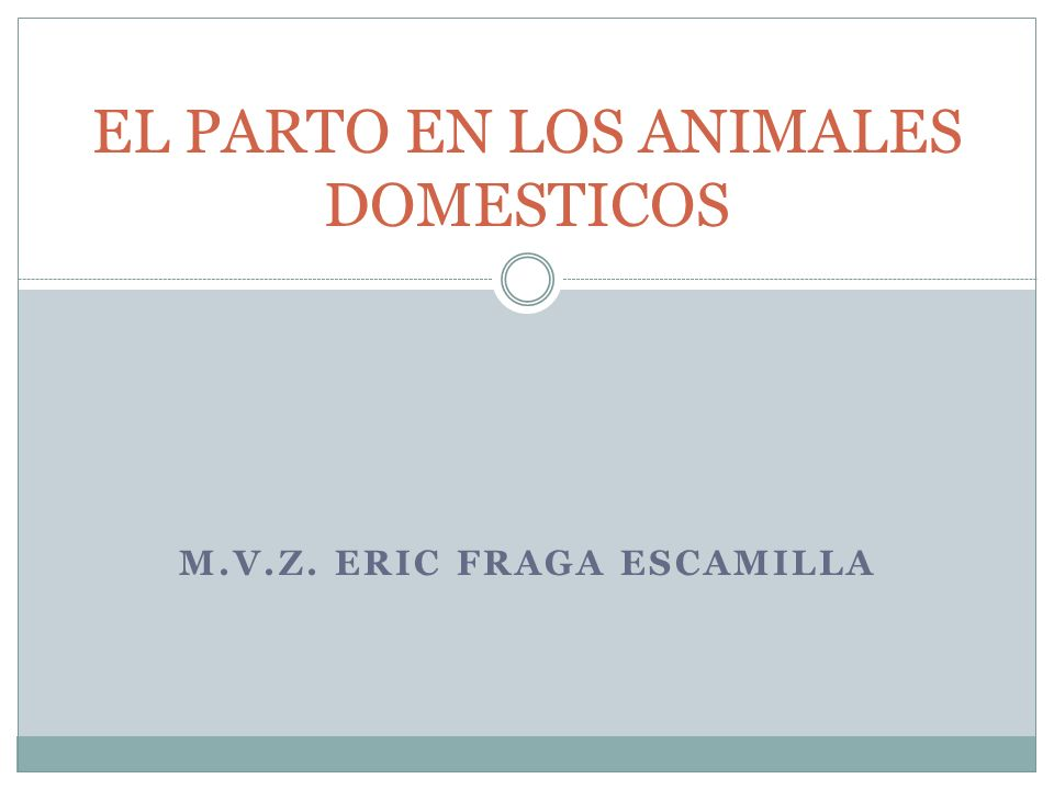 EL PARTO EN LOS ANIMALES DOMESTICOS