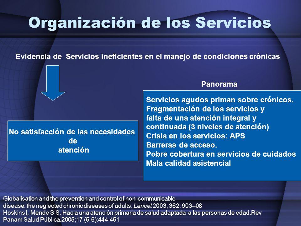Organización de los Servicios