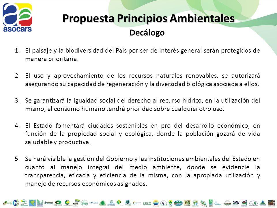 Propuesta Principios Ambientales