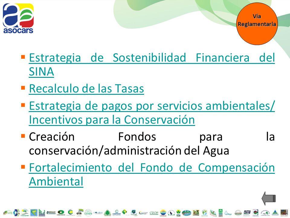 Estrategia de Sostenibilidad Financiera del SINA