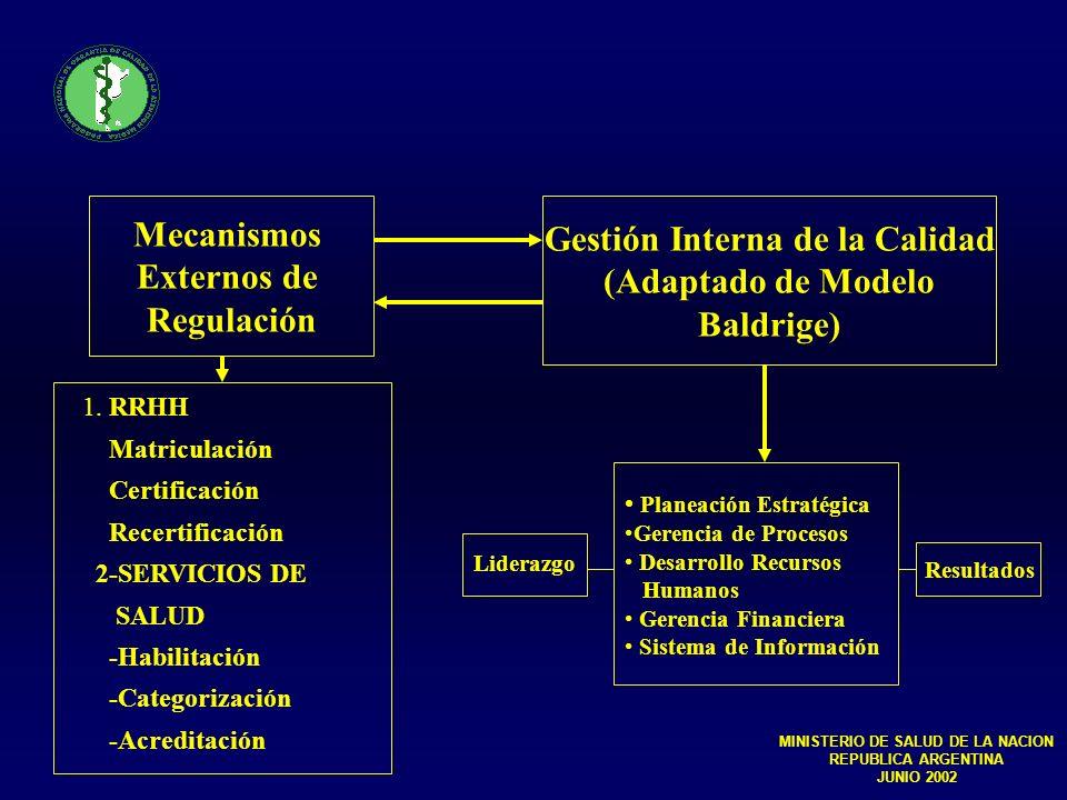 Gestión Interna de la Calidad MINISTERIO DE SALUD DE LA NACION