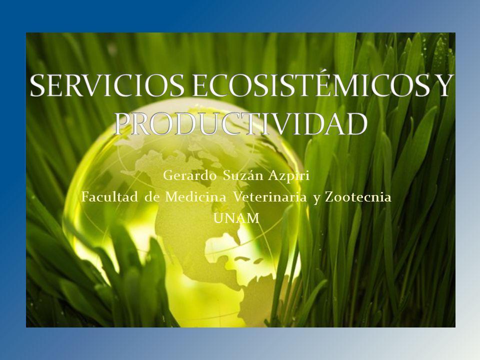 SERVICIOS ECOSISTÉMICOS Y PRODUCTIVIDAD