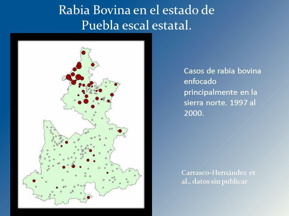 Rabia Bovina en el estado de Puebla escal estatal.