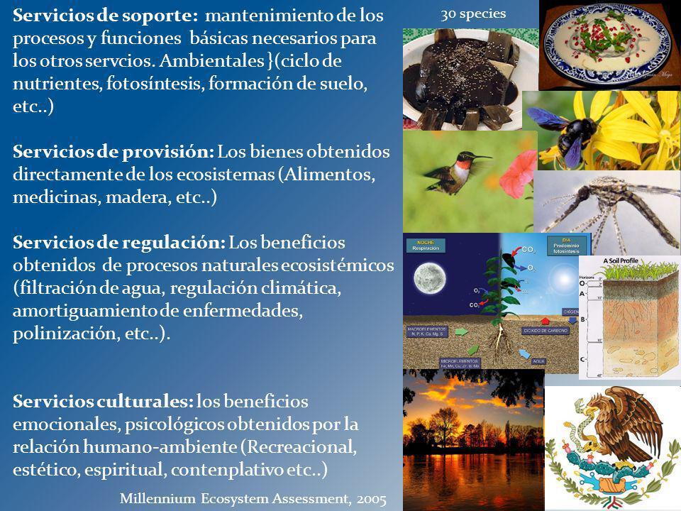 Servicios de soporte: mantenimiento de los procesos y funciones básicas necesarios para los otros servcios. Ambientales }(ciclo de nutrientes, fotosíntesis, formación de suelo, etc..)