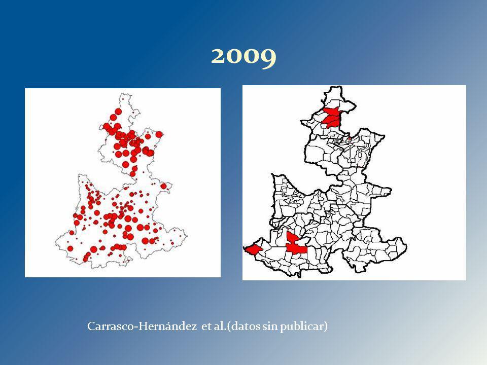 2009 Carrasco-Hernández et al.(datos sin publicar) 31