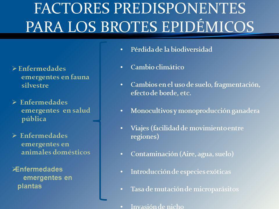 FACTORES PREDISPONENTES PARA LOS BROTES EPIDÉMICOS