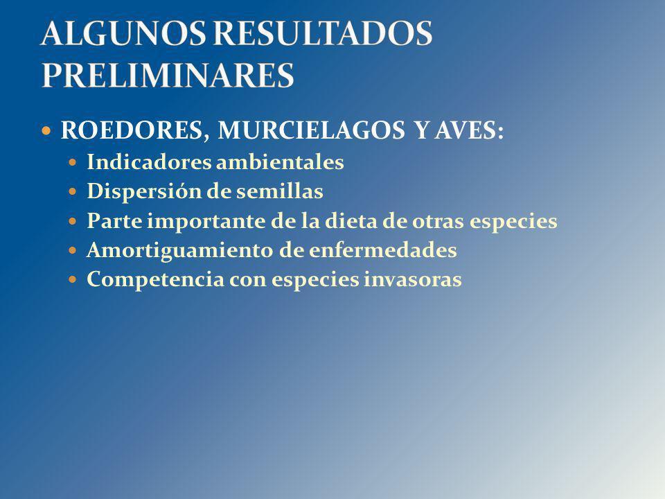 ALGUNOS RESULTADOS PRELIMINARES