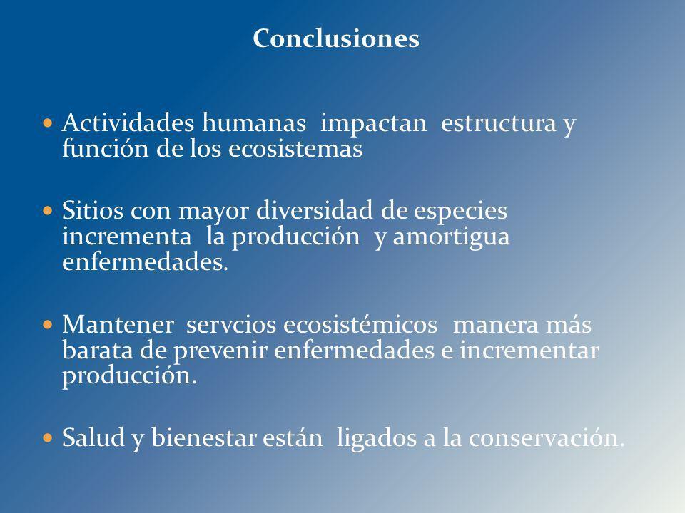 Actividades humanas impactan estructura y función de los ecosistemas