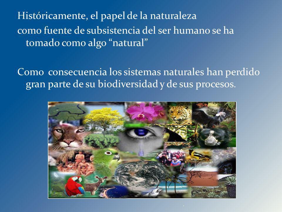 Históricamente, el papel de la naturaleza como fuente de subsistencia del ser humano se ha tomado como algo natural Como consecuencia los sistemas naturales han perdido gran parte de su biodiversidad y de sus procesos.