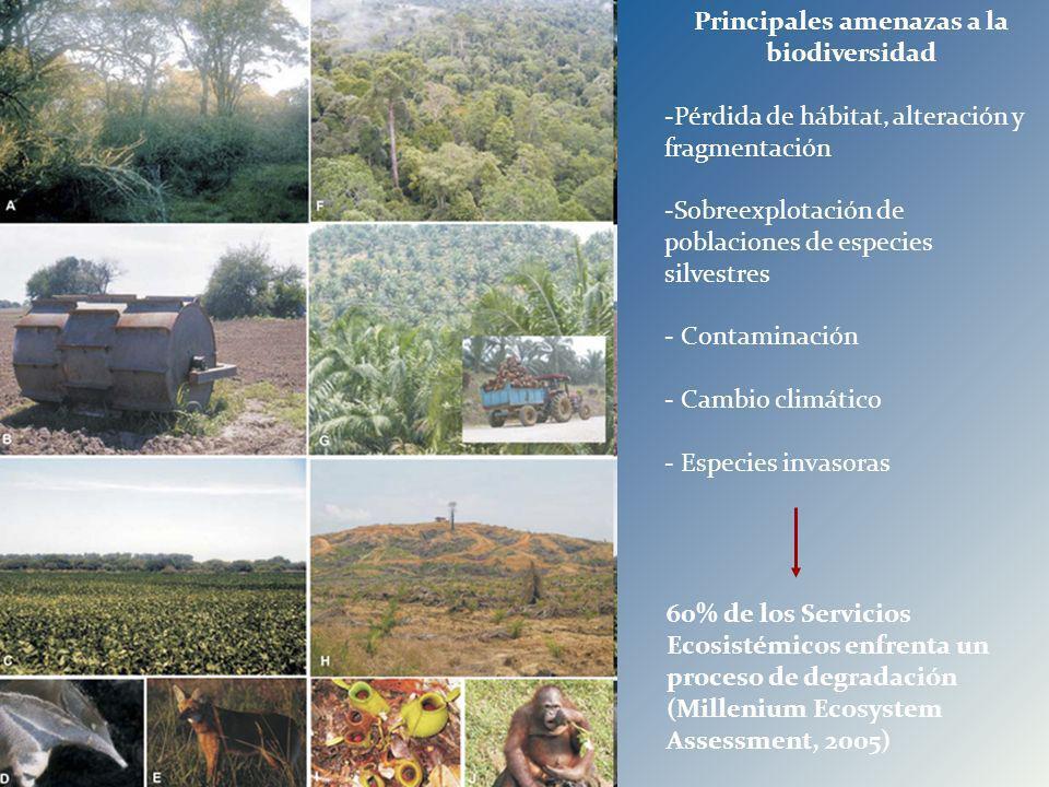 Principales amenazas a la biodiversidad