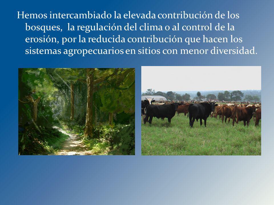 Hemos intercambiado la elevada contribución de los bosques, la regulación del clima o al control de la erosión, por la reducida contribución que hacen los sistemas agropecuarios en sitios con menor diversidad.