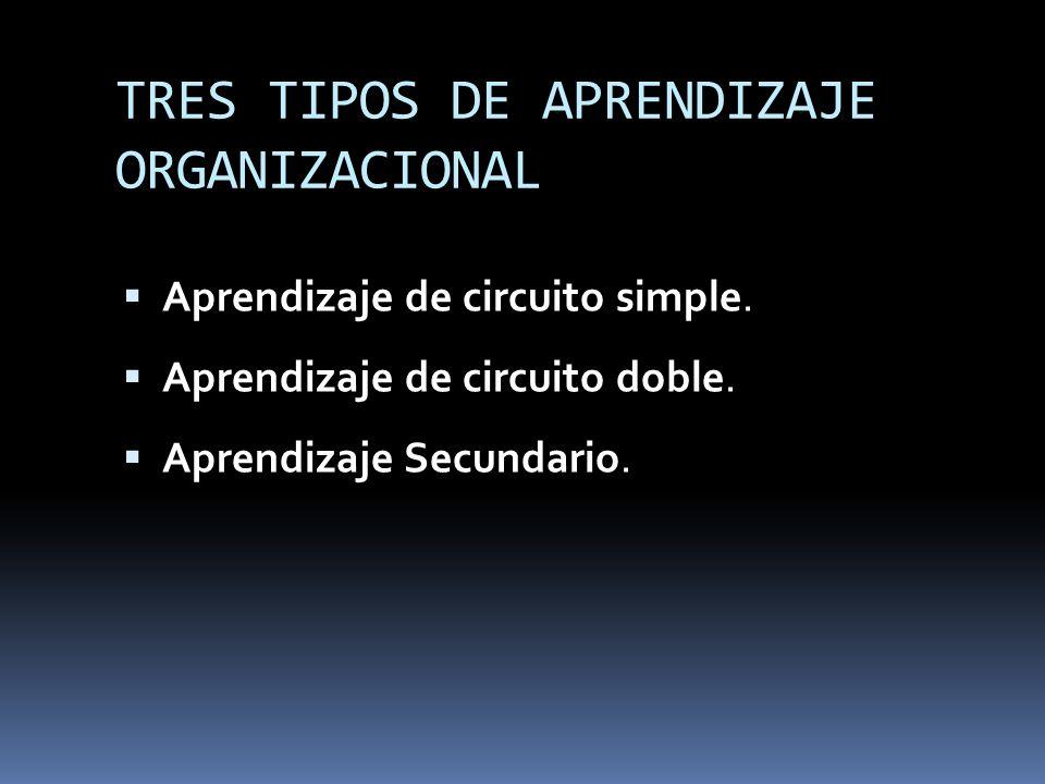 TRES TIPOS DE APRENDIZAJE ORGANIZACIONAL