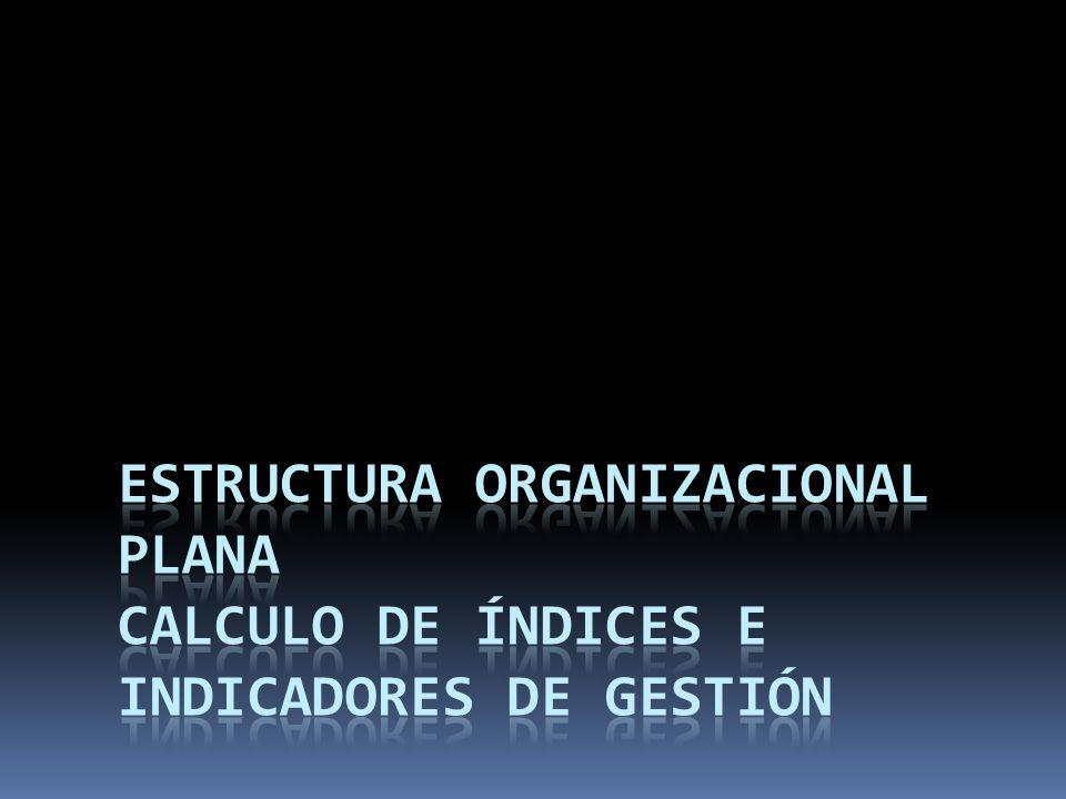 Estructura Organizacional Plana Calculo de Índices e Indicadores de Gestión