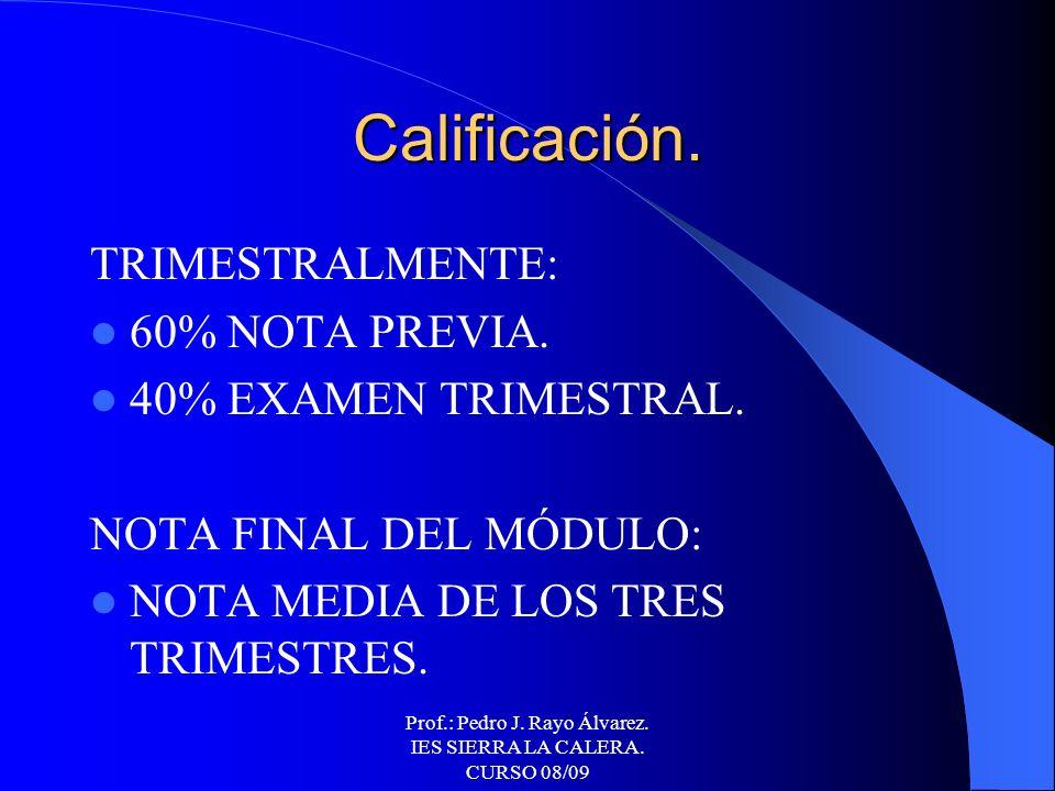 Prof.: Pedro J. Rayo Álvarez. IES SIERRA LA CALERA. CURSO 08/09