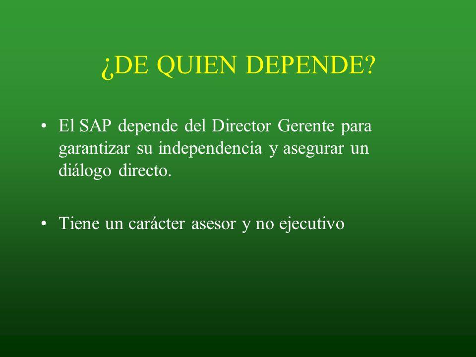 ¿DE QUIEN DEPENDE El SAP depende del Director Gerente para garantizar su independencia y asegurar un diálogo directo.