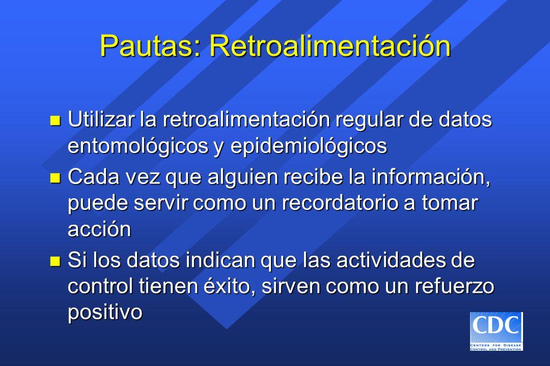Pautas: Retroalimentación