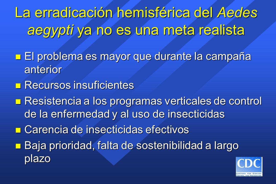 La erradicación hemisférica del Aedes aegypti ya no es una meta realista