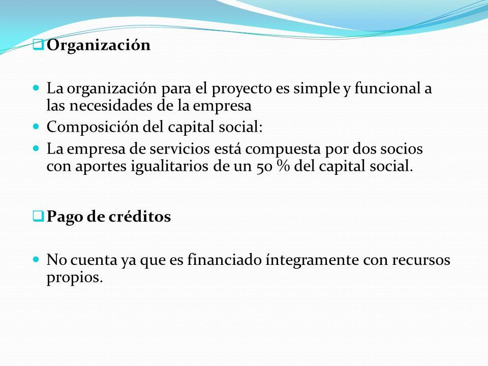 Organización La organización para el proyecto es simple y funcional a las necesidades de la empresa.