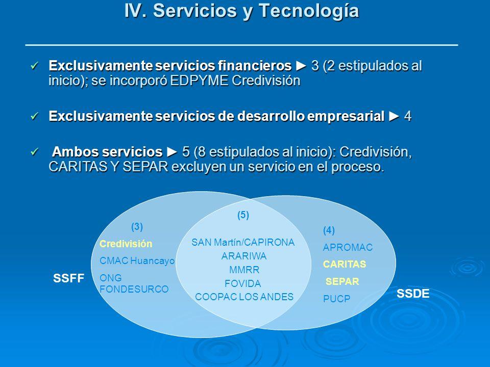IV. Servicios y Tecnología