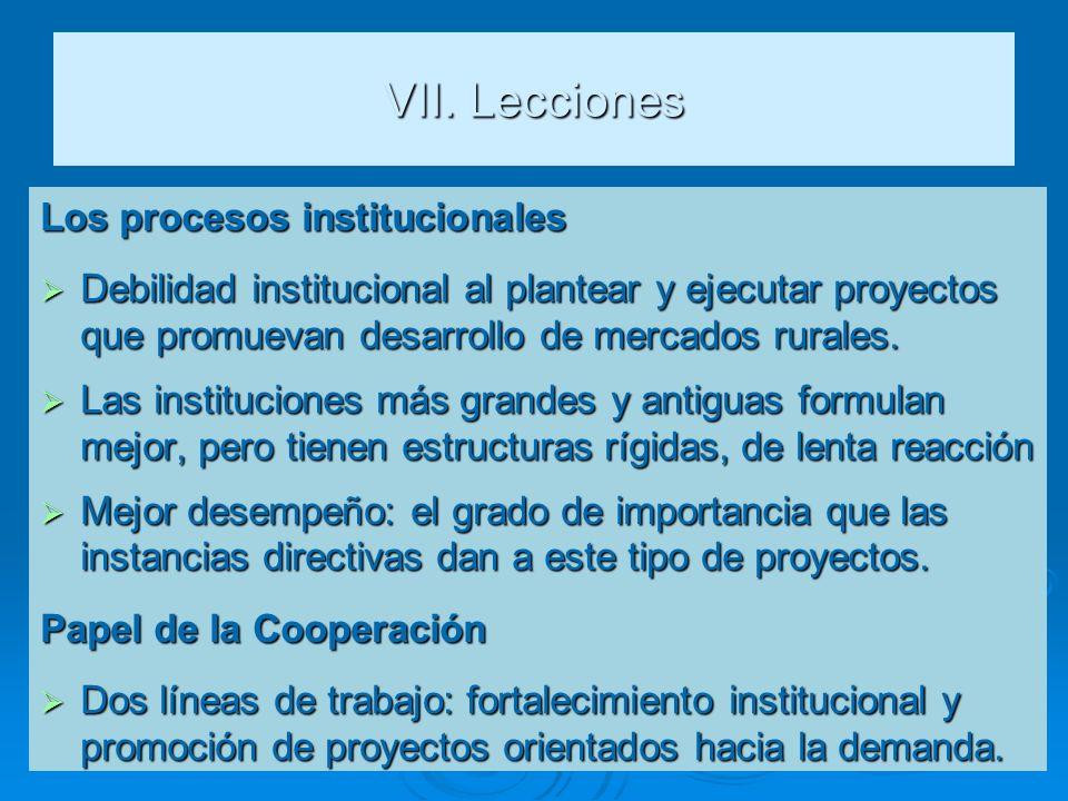 VII. Lecciones Los procesos institucionales