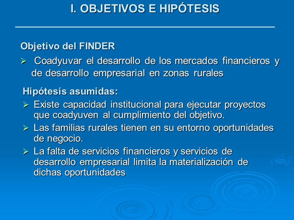 I. OBJETIVOS E HIPÓTESIS