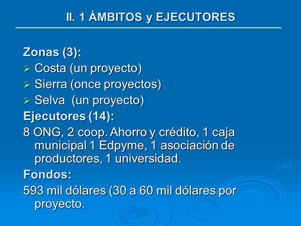 II. 1 ÁMBITOS y EJECUTORES