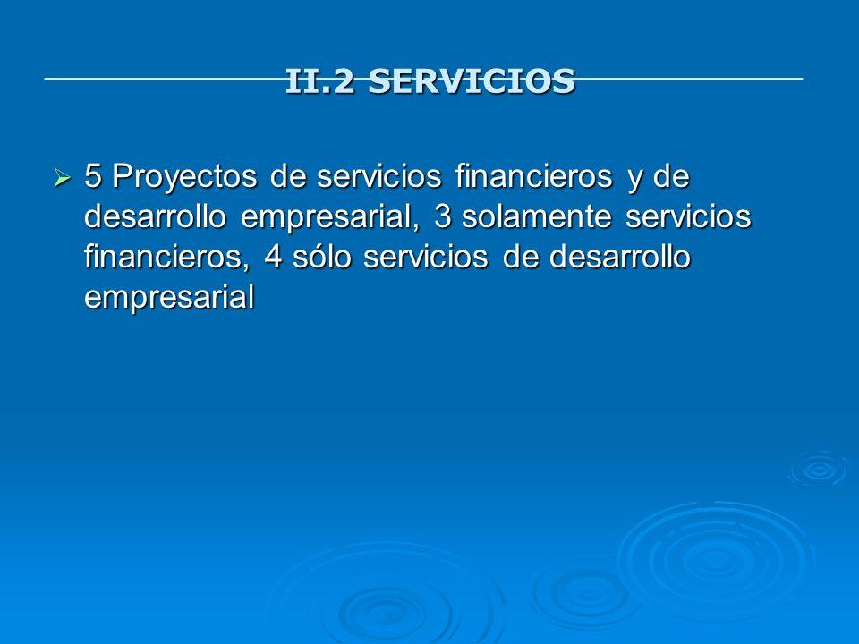 II.2 SERVICIOS