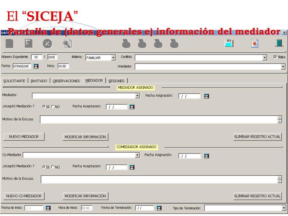 Pantalla de (datos generales e) información del mediador