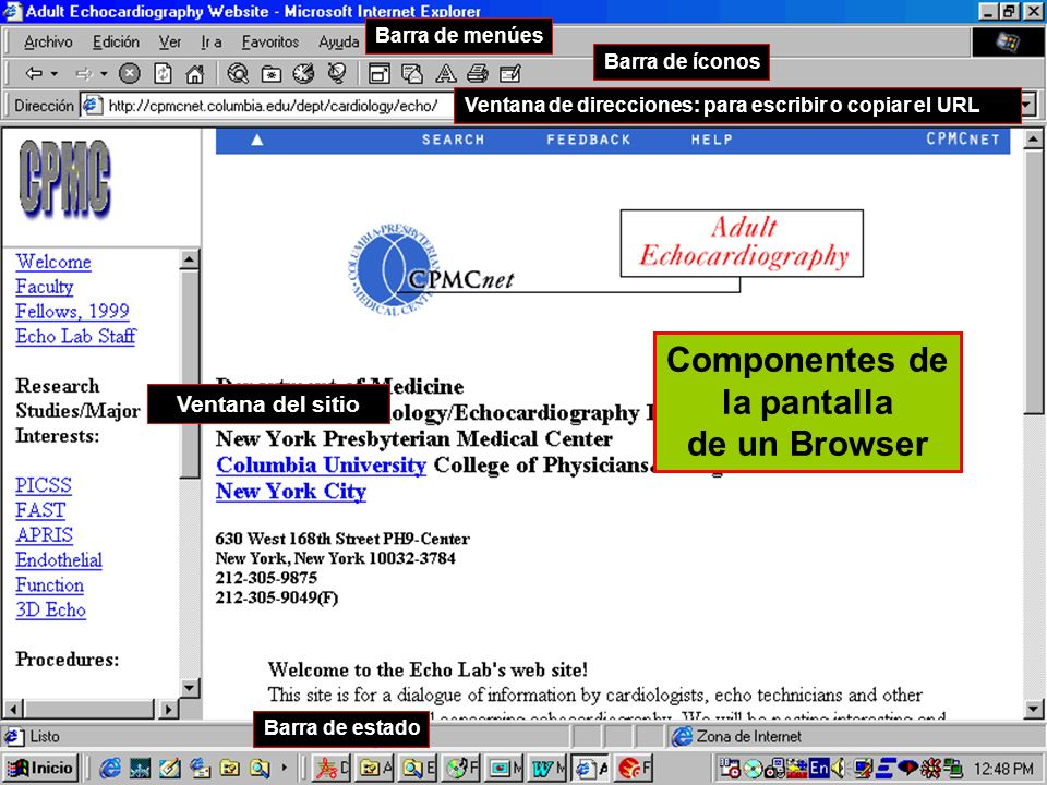 Componentes de la pantalla de un Browser