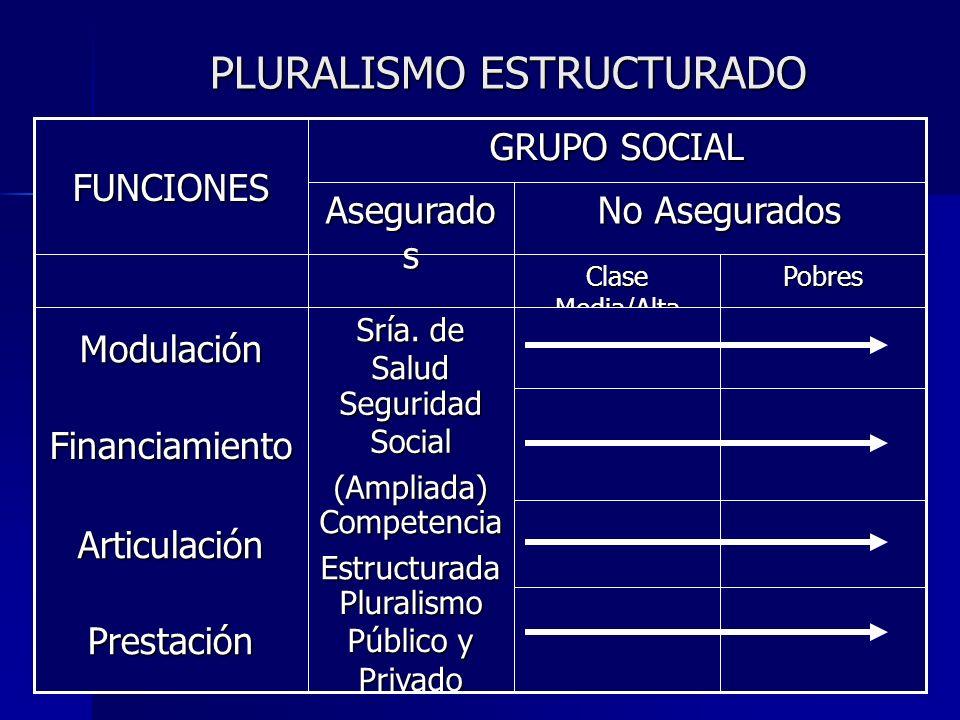 PLURALISMO ESTRUCTURADO