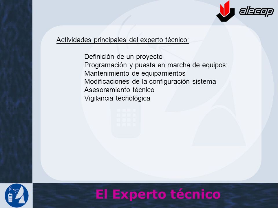 El Experto técnico Actividades principales del experto técnico: