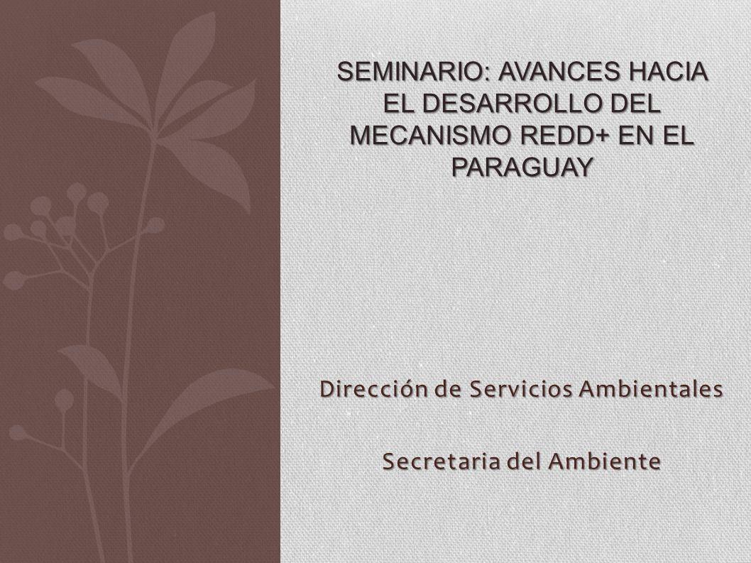Dirección de Servicios Ambientales Secretaria del Ambiente