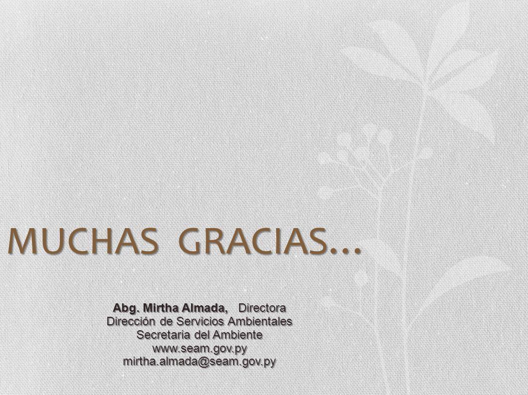MUCHAS GRACIAS… Abg. Mirtha Almada, Directora