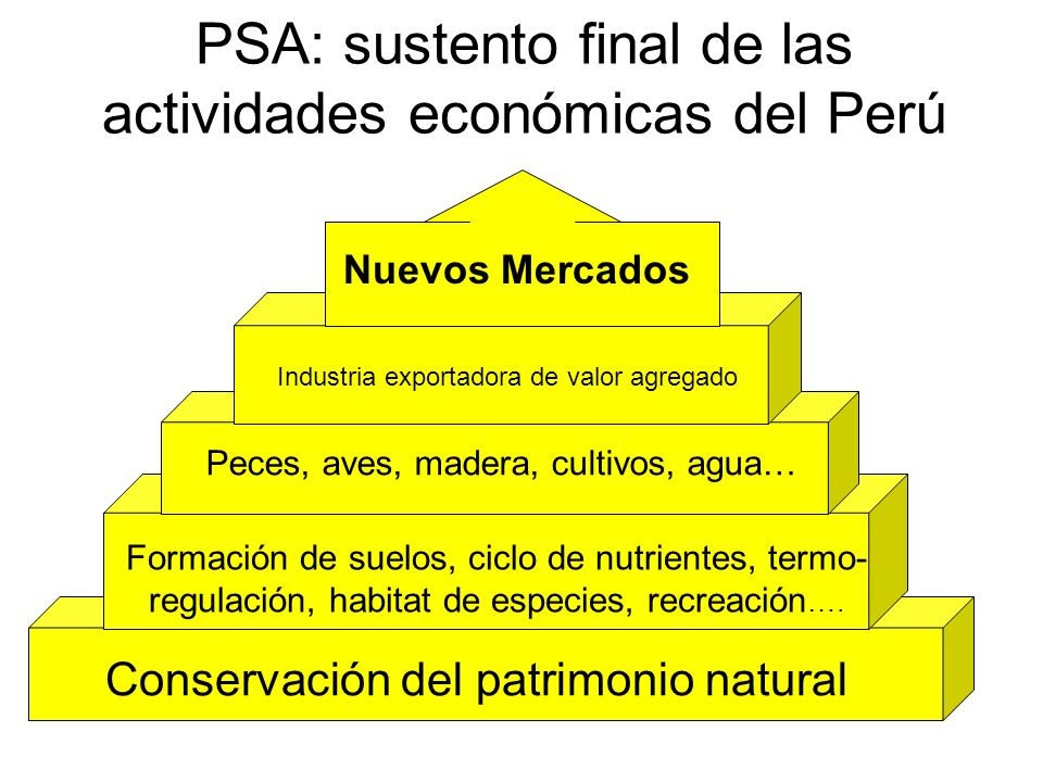 PSA: sustento final de las actividades económicas del Perú