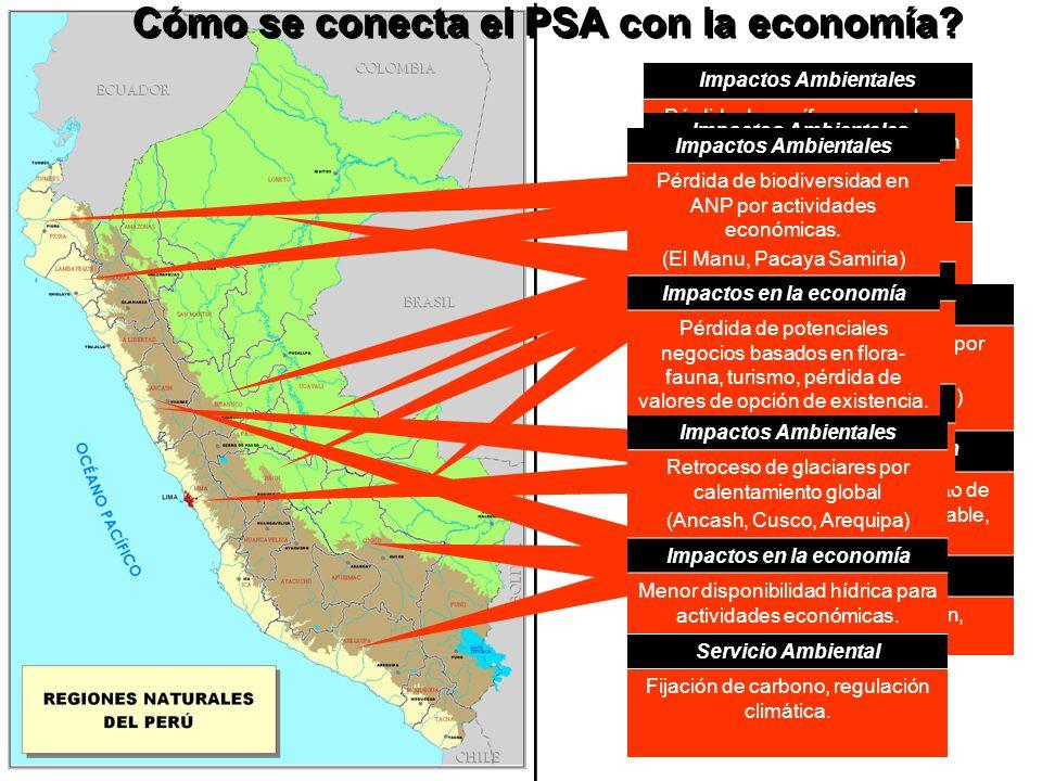 Cómo se conecta el PSA con la economía