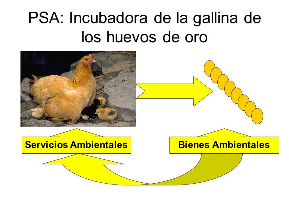 PSA: Incubadora de la gallina de los huevos de oro