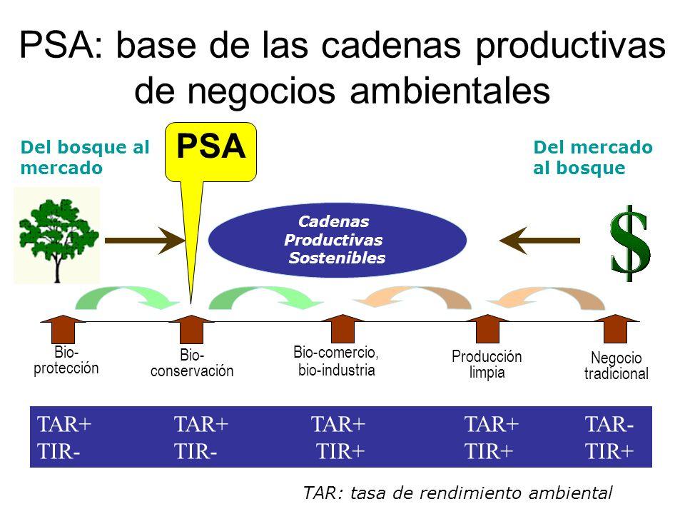 PSA: base de las cadenas productivas de negocios ambientales