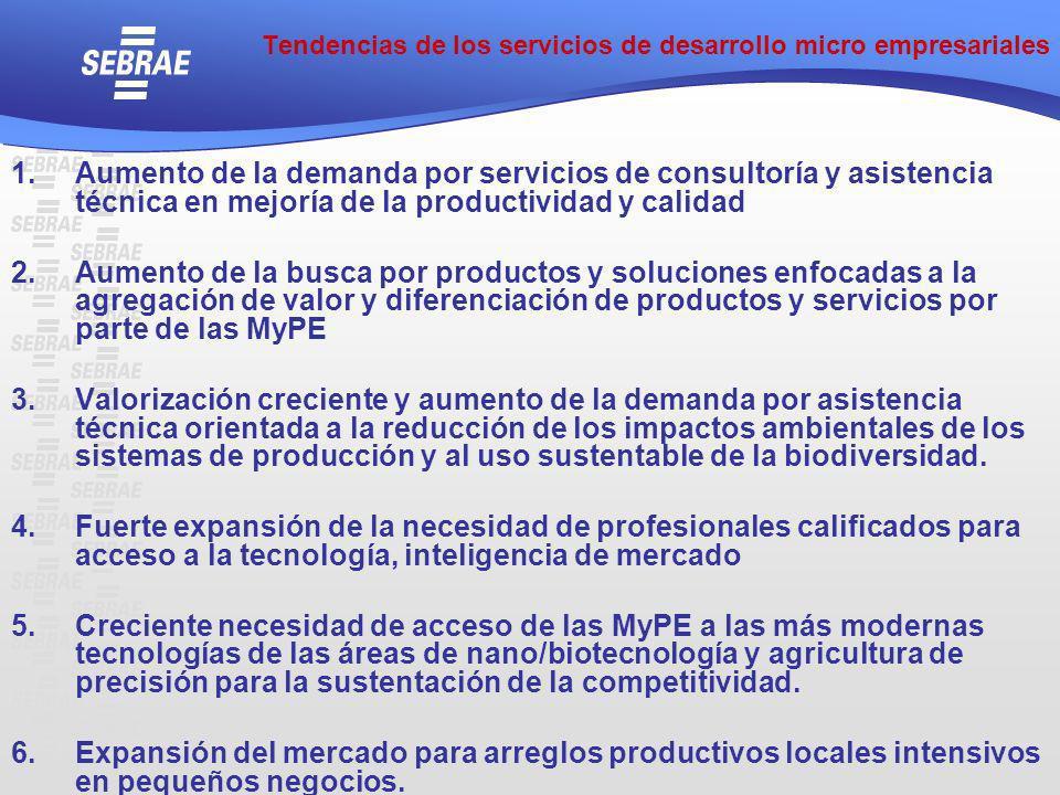 Tendencias de los servicios de desarrollo micro empresariales